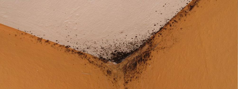 Tratamiento de humedades control de humedades - Como solucionar problemas de condensacion en una vivienda ...