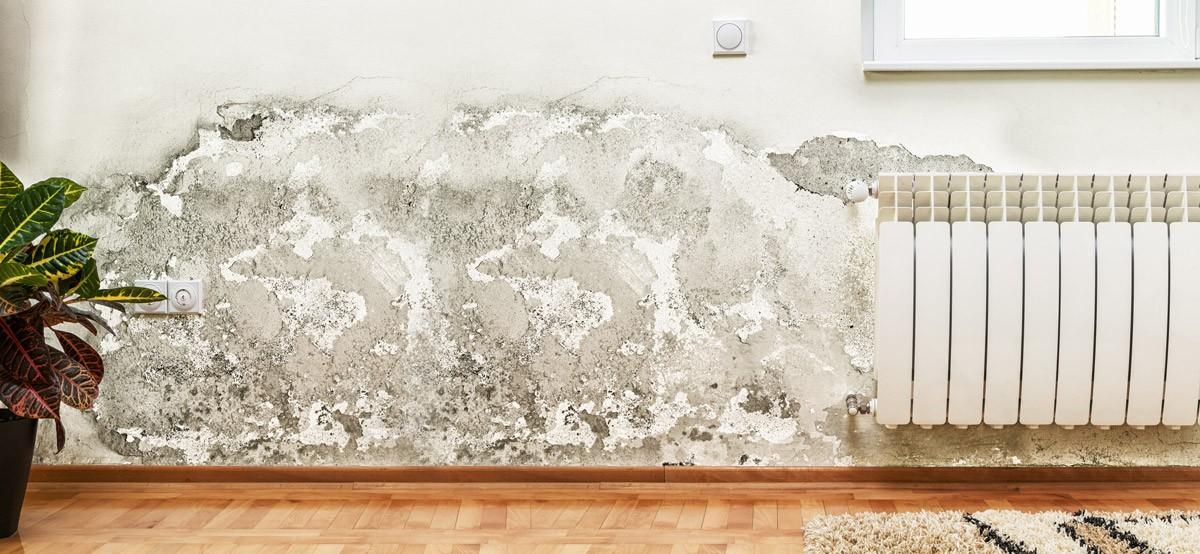 Filtraciones de agua en casa control de humedades - Empresas carballo ...