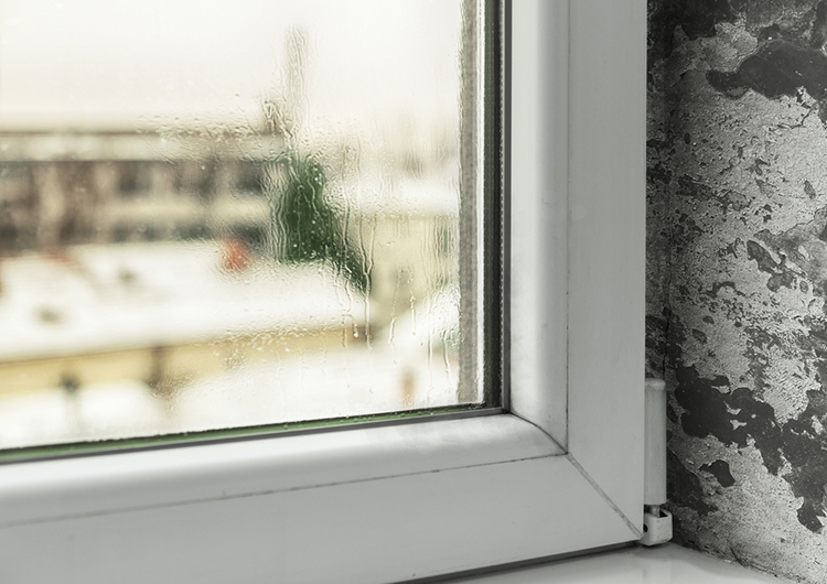 C mo quitar humedades de casas antiguas control de humedades - Humedades en casa ...