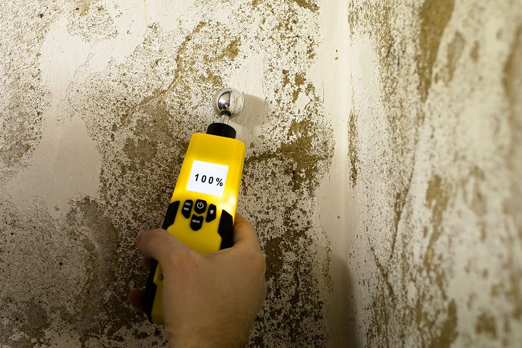 Quitar humedad de paredes del interior de viviendas